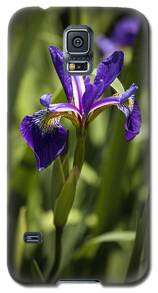 Galaxy S5 Case featuring the photograph Purple Iris by Penny Lisowski