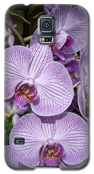Purple Ladies Galaxy S5 Case