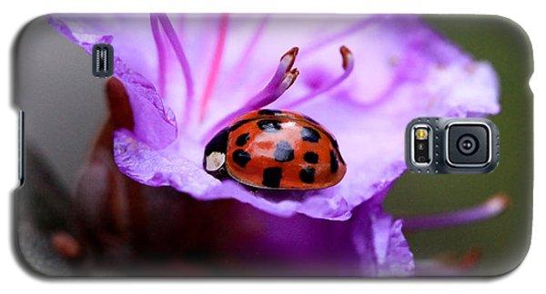 Purple Lady Galaxy S5 Case
