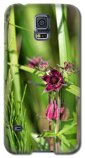 Galaxy S5 Case featuring the photograph Purple by Leif Sohlman