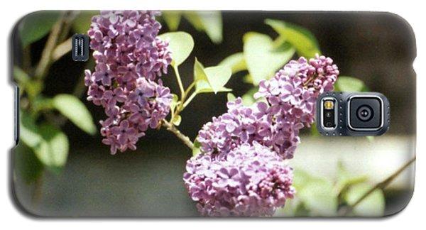 Purple Lilac Galaxy S5 Case