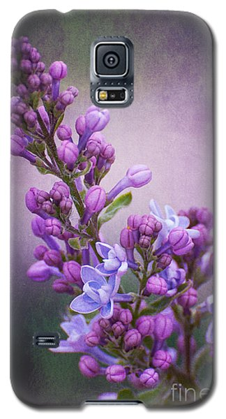 Purple Lilacs Galaxy S5 Case