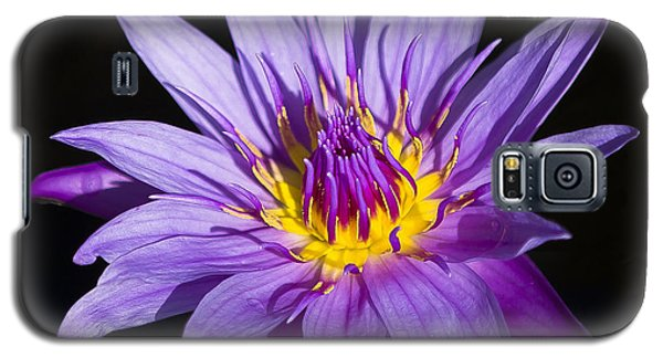 Purple Lilly Galaxy S5 Case