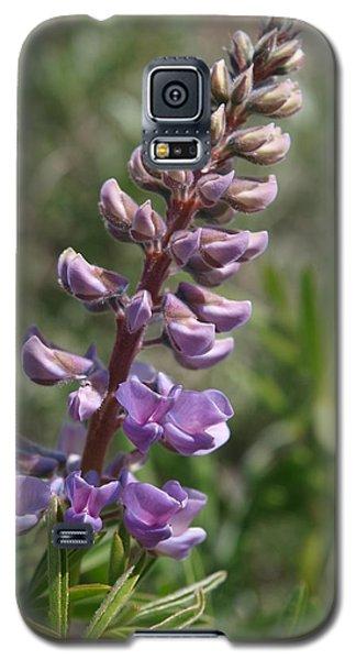 Purple Lupine Galaxy S5 Case