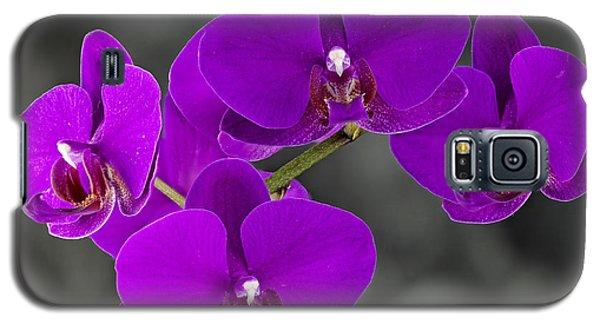 Purple Majesty Galaxy S5 Case