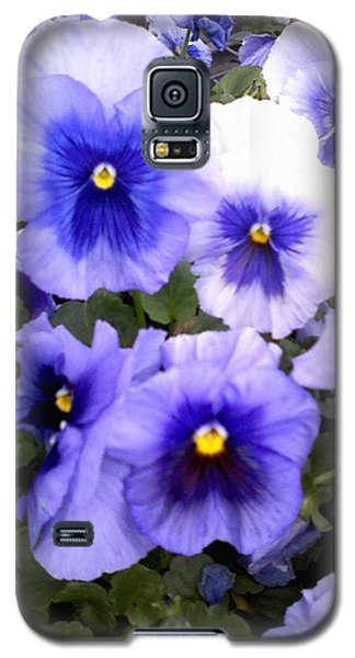 Galaxy S5 Case featuring the photograph Purple Morning Glory by Fortunate Findings Shirley Dickerson