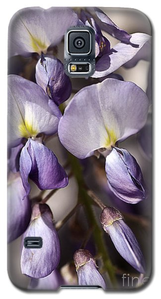 Galaxy S5 Case featuring the photograph Purple Of Wisteria by Joy Watson