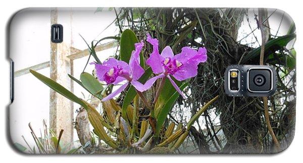 Purple Orchid Galaxy S5 Case
