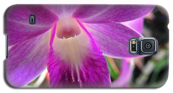 Galaxy S5 Case featuring the photograph Purple Orchid by Kristine Merc
