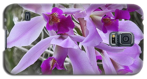 Purple Orchid Personality Galaxy S5 Case