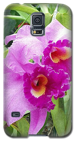 Purple Cattleya Orchids Galaxy S5 Case