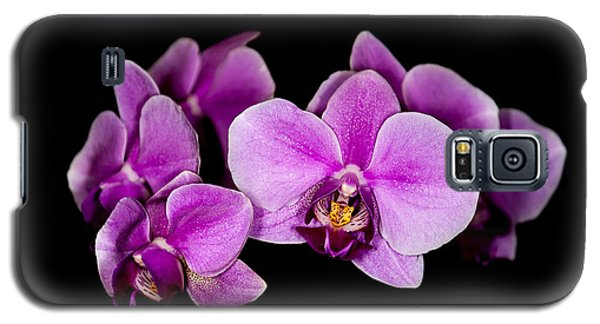 Purple Orchids Galaxy S5 Case