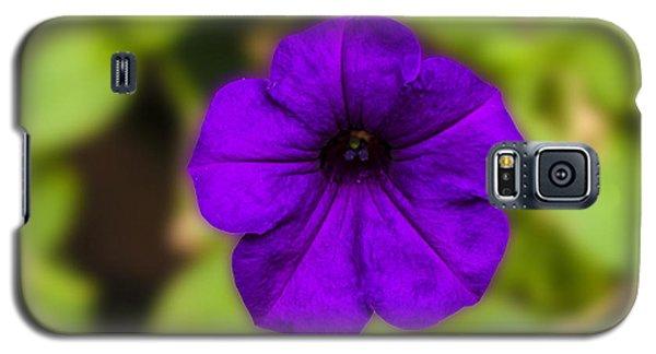 Purple Pansy Galaxy S5 Case