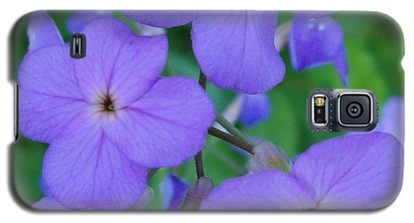 Galaxy S5 Case featuring the photograph Purple Passion by Sara  Raber
