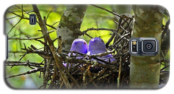 Purple Peeps Pair Galaxy S5 Case