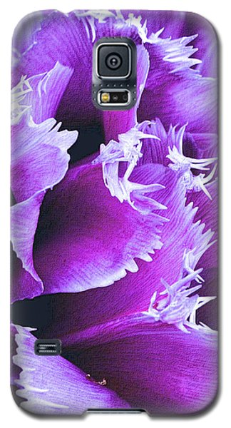 Purple Perfection Galaxy S5 Case