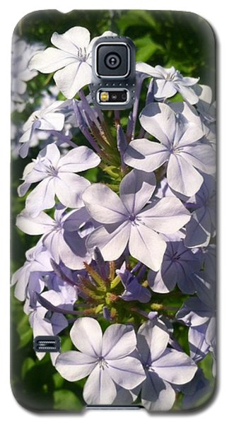 Galaxy S5 Case featuring the photograph Purple Petals by Alohi Fujimoto