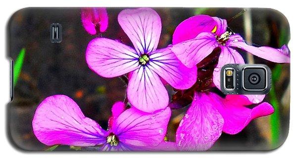 Purple Lunaria Galaxy S5 Case by Karen Molenaar Terrell