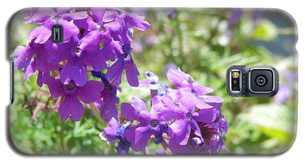 Purple Phlox Galaxy S5 Case by Pema Hou