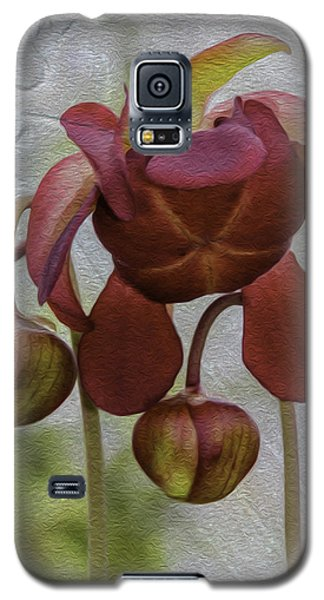 Galaxy S5 Case featuring the photograph Purple Pitcher Plant by Betty Denise