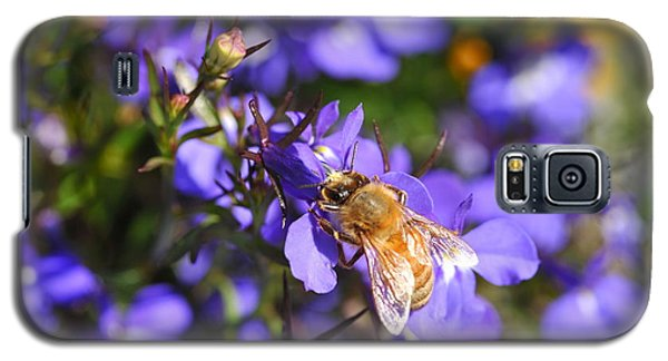Purple Pollination  Galaxy S5 Case