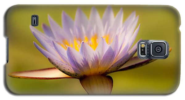 Purple Promise Galaxy S5 Case
