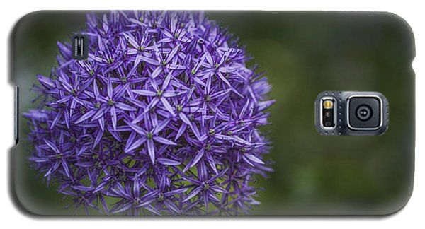 Purple Puff Galaxy S5 Case