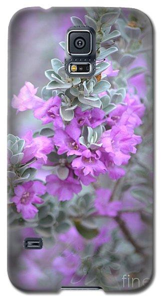 Purple Sage Galaxy S5 Case