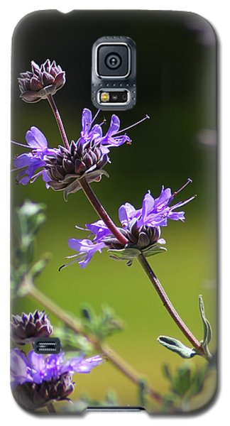 Purple Sage Galaxy S5 Case by Richard Stephen