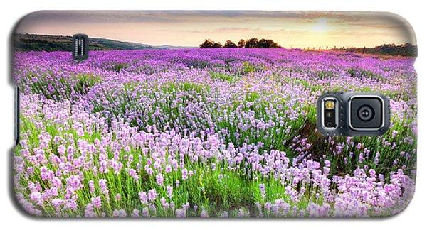Purple Sea Galaxy S5 Case