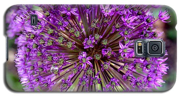 Purple Sensation Allium Galaxy S5 Case