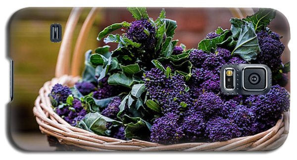 Purple Sprouting Broccoli Galaxy S5 Case