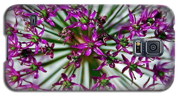 Galaxy S5 Case featuring the photograph Purple Starlight by Aimee L Maher Photography and Art Visit ALMGallerydotcom