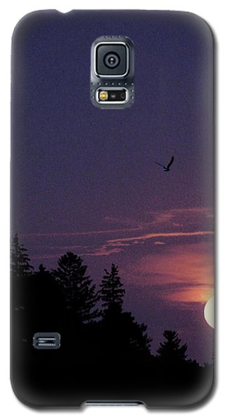 Galaxy S5 Case featuring the photograph Purple Sunset With Sea Gull by Peter v Quenter