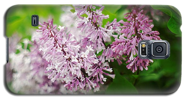 Galaxy S5 Case featuring the photograph Purple Syringa Flowers by Suzanne Powers
