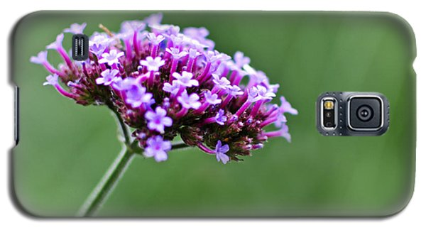 Galaxy S5 Case featuring the photograph Purple Top Flower by Maria Janicki