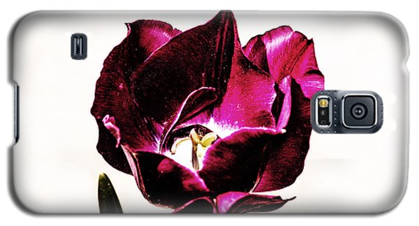 Galaxy S5 Case featuring the photograph Purple Tulip by Angela DeFrias