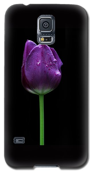 Purple Tulip Galaxy S5 Case
