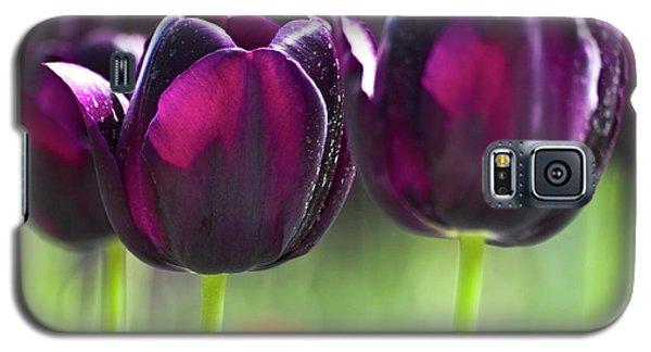 Purple Tulips Galaxy S5 Case