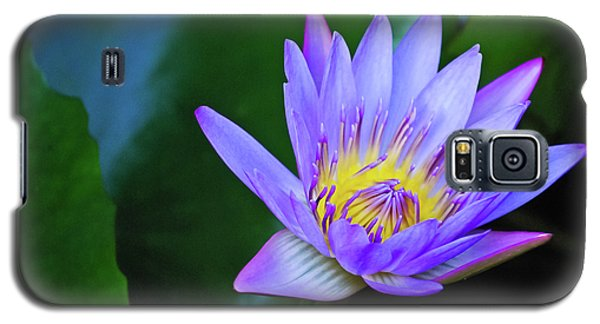 Purple Water Lily Galaxy S5 Case