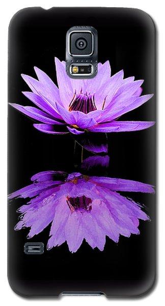 Purple Water Lily Galaxy S5 Case by Elizabeth Budd