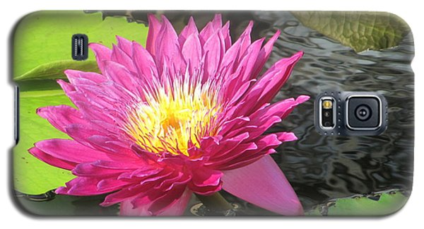 Purple Water Lily Galaxy S5 Case by Richard Reeve