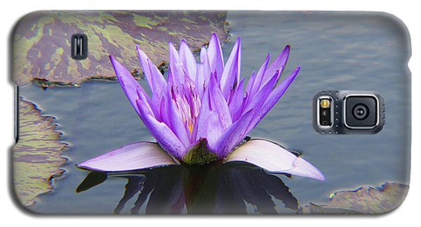 Purple Water Lily With Lily Pads One Galaxy S5 Case by J Jaiam