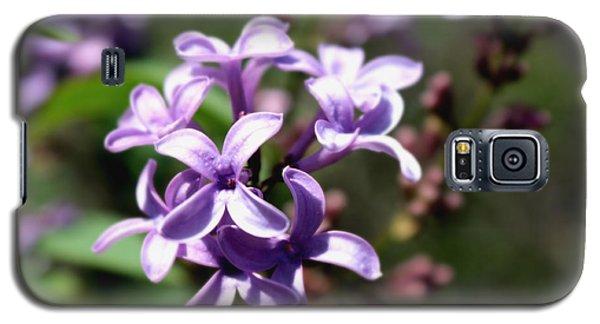 Purple Wild Flowers Galaxy S5 Case