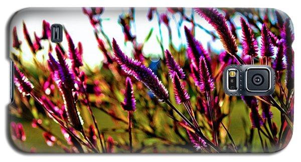 Purpleness Galaxy S5 Case