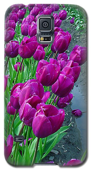 Purplepassion Galaxy S5 Case by John Bushnell