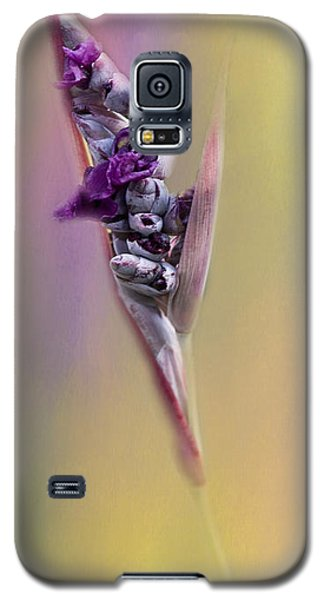 Purplicious Galaxy S5 Case