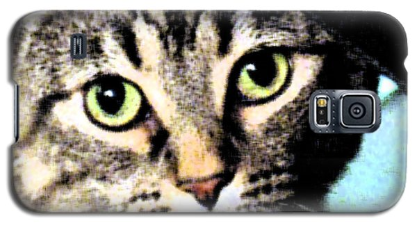 Galaxy S5 Case featuring the photograph Purrfectly Bright Eyed by Nina Silver