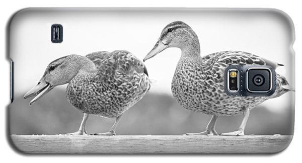 Quack Quack Galaxy S5 Case