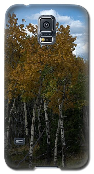 Quaking Aspen Galaxy S5 Case